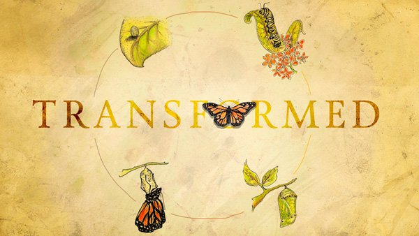 transformed_sermon_series
